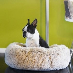 Comfy Fur Pet Bed